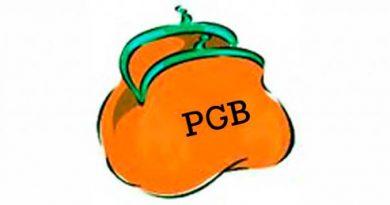 Inwoners noordelijke provincies maken het vaakst gebruik van het PGB