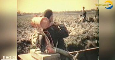 bollen kweken in 1964 Bovenkarspel