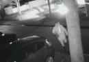 Nieuwe camera beelden van brandstichting bedrijfswagen, wie herkend deze dader?